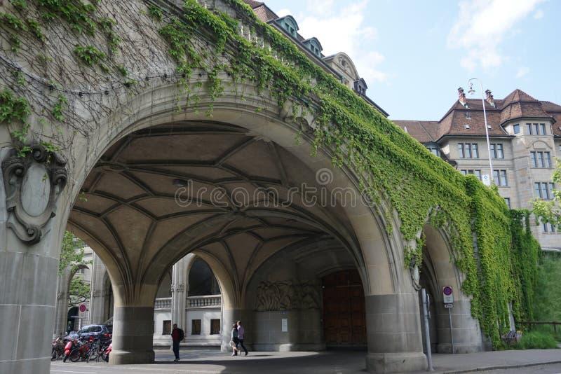 Un ponte con le viti verdi a Zurigo immagini stock