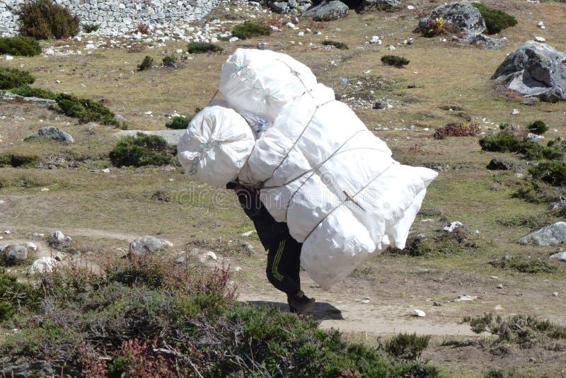 Un portier népalais dans Dingboche, voyage de camp de base d'Everest, Népal photographie stock libre de droits
