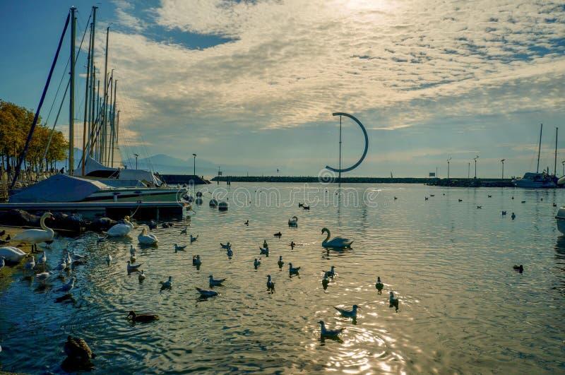 Un porto sul lago Léman fotografia stock