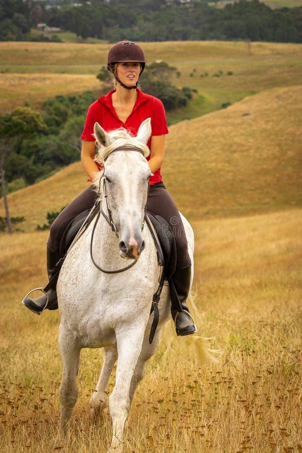 Un portrait tiré d'une belle jeune femme de sourire heureuse habillée dans un polo rouge montant son cheval blanc par long photo stock