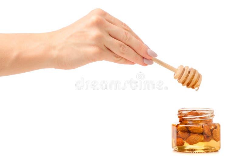 Un pot de miel avec une cuillère pour les amandes nuts de miel dans des mains image stock