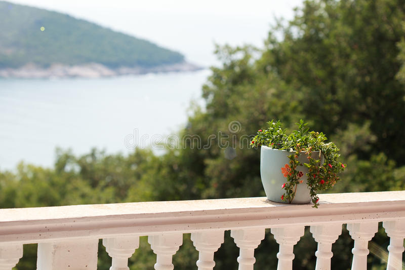 Un pote de flores en la barandilla del balcón con una hermosa vista foto de archivo