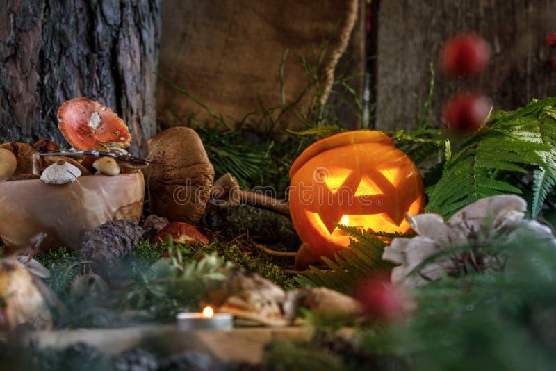 Un potiron rougeoyant dans la hutte d'une sorcière entourée par des champignons et des herbes de forêt pour le breuvage magique photos stock