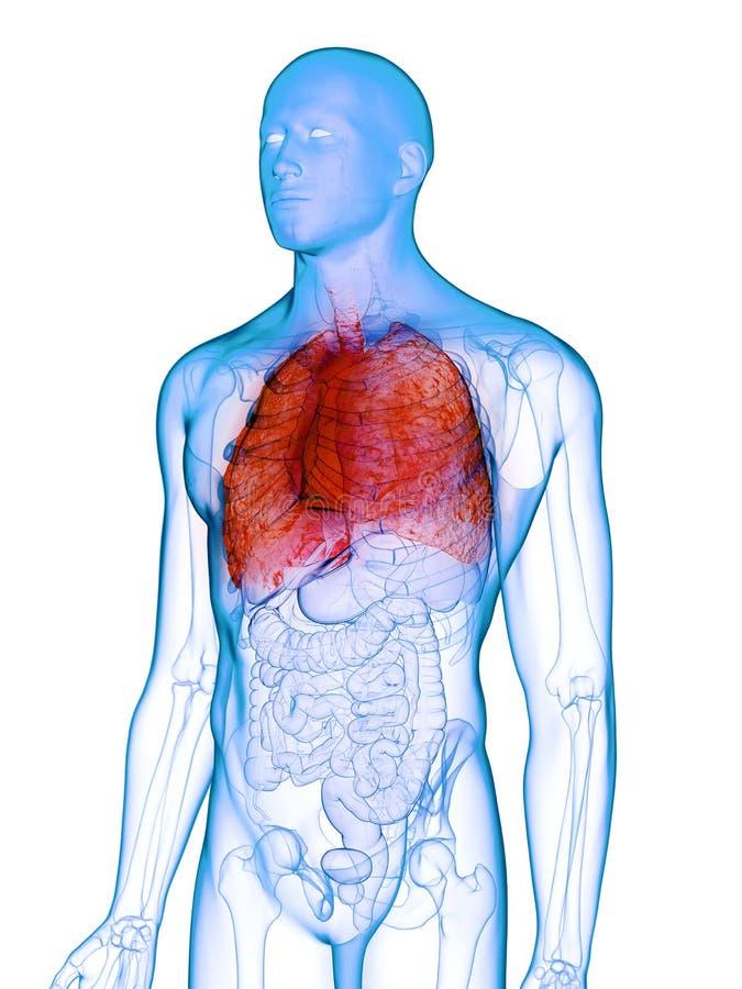 Un poumon malade illustration de vecteur