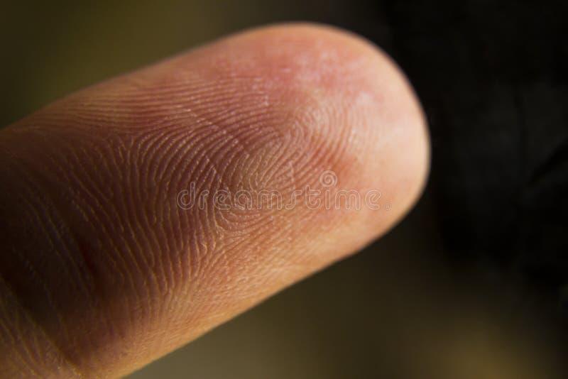 Un primer macro extremo de una yema del dedo fotografía de archivo libre de regalías