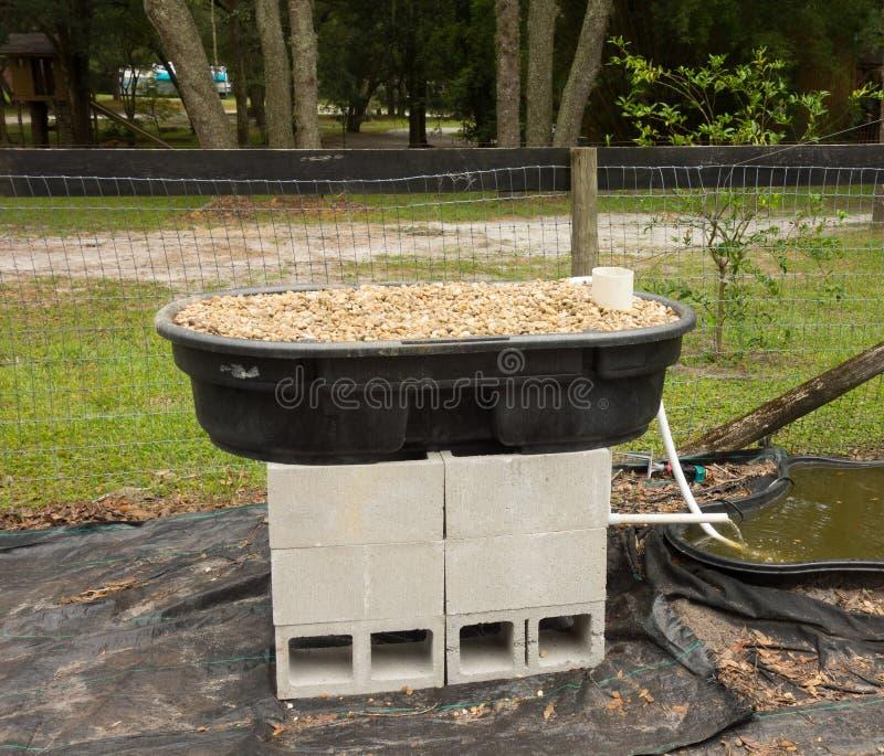 Un projet fait maison d'aquaponics en Floride image libre de droits