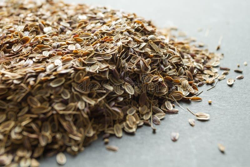 Un pu?ado de semillas de eneldo org?nicas secadas, medicina alternativa fotos de archivo
