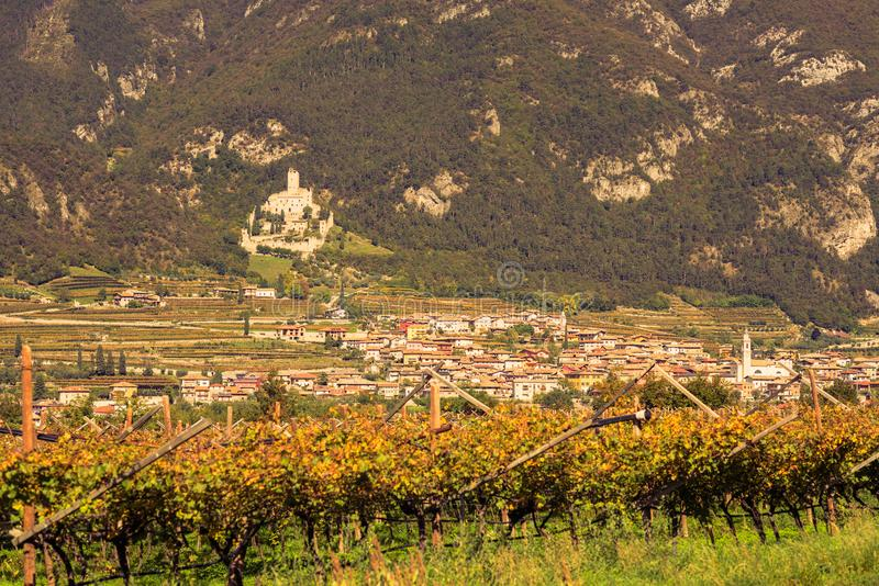 Un pueblo y un viñedo en la montaña en la provincia del último otoño de Bolzano fotografía de archivo libre de regalías
