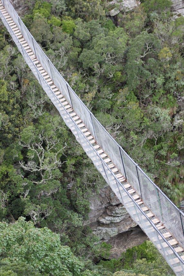 Un puente de suspensión fotografía de archivo