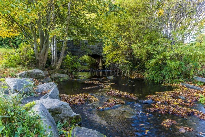 Un puente sobre una corriente en Dublin Park, Irlanda imagen de archivo libre de regalías