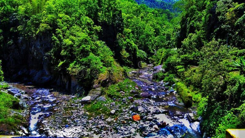 Un punto di Meating di due fiumi fotografia stock libera da diritti