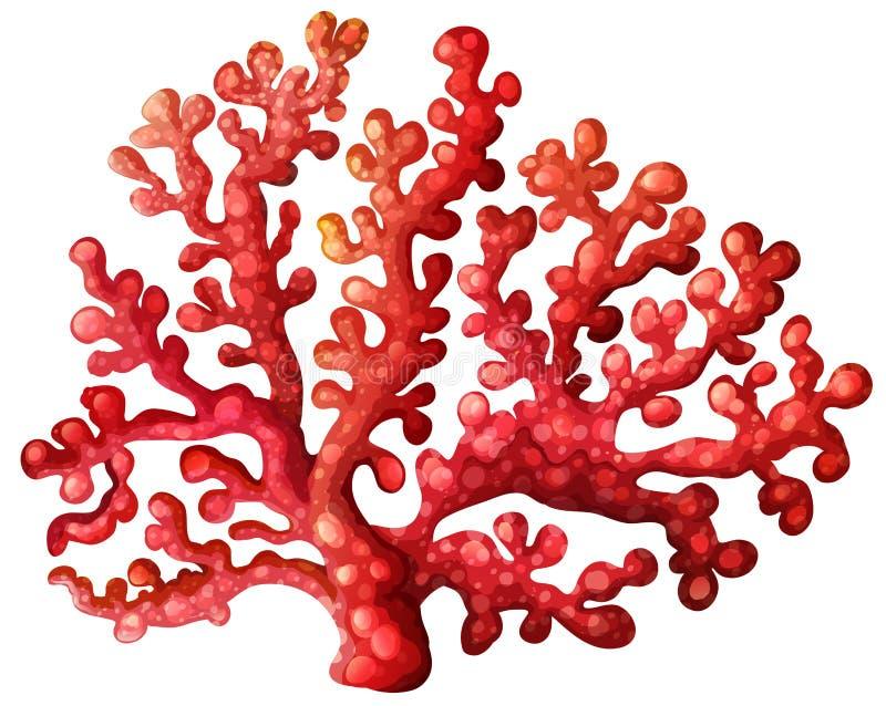 Un récif coralien illustration stock