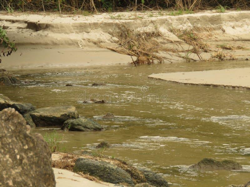 Un río en Trindade - Paraty RJ foto de archivo libre de regalías