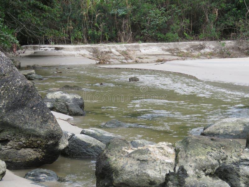 Un río en Trindade - Paraty RJ fotografía de archivo libre de regalías
