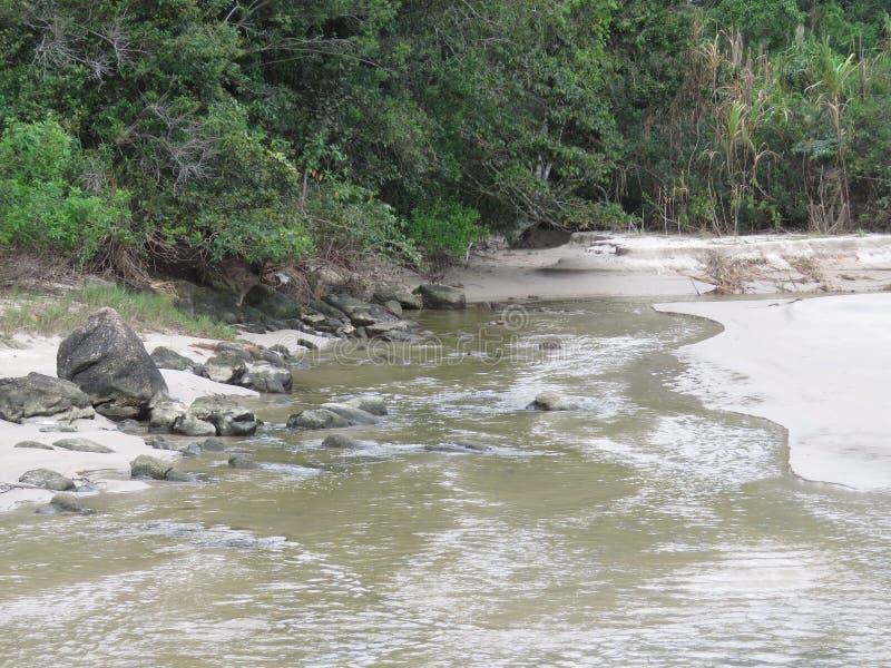 Un río en Trindade - Paraty RJ fotos de archivo