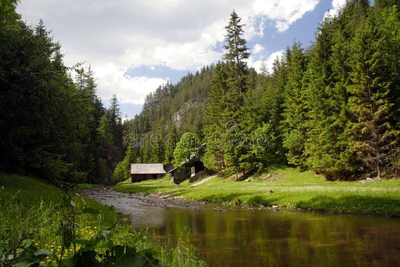 Un río frío en el valle verde foto de archivo libre de regalías