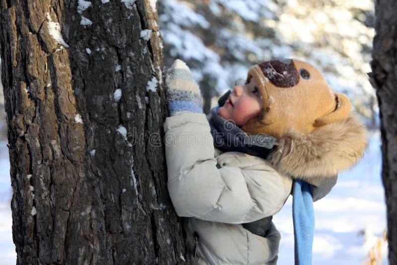 un ragazzino sta nascondendosi dietro un albero in tempo nevoso fotografie stock