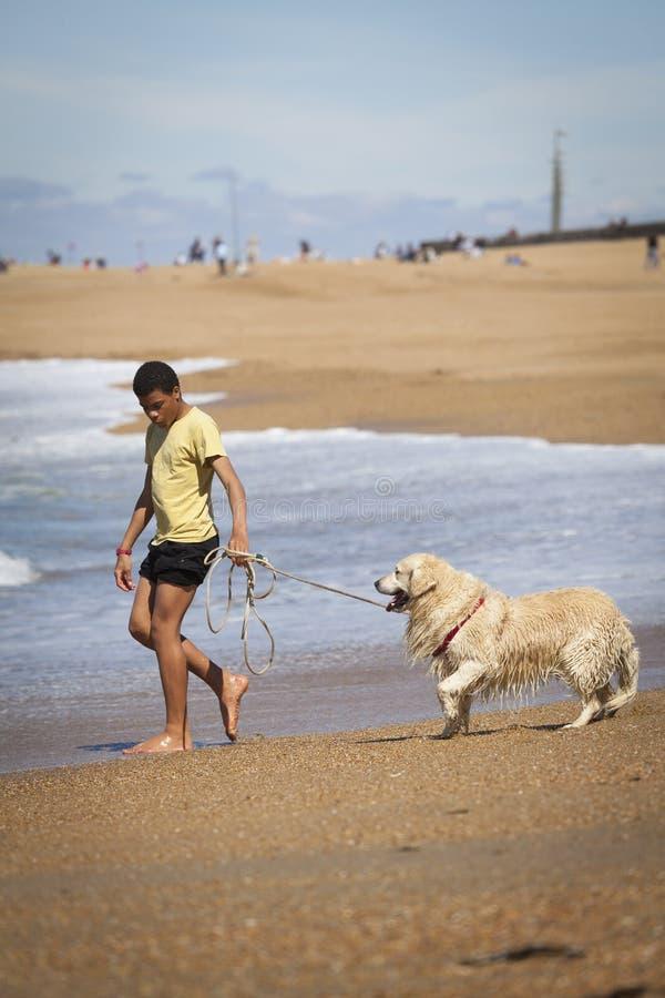 Un ragazzo con un cane sulla spiaggia immagine stock libera da diritti
