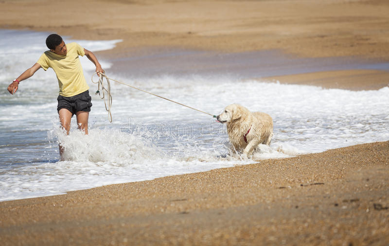 Un ragazzo con un cane sulla spiaggia fotografia stock