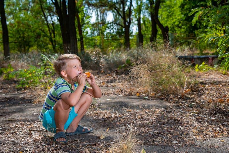 Un ragazzo sta mangiando un panino nel legno, occupante fotografie stock
