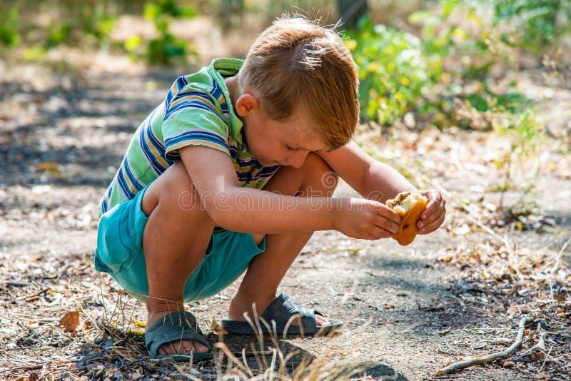 Un ragazzo sta mangiando un panino nel legno, occupante immagine stock