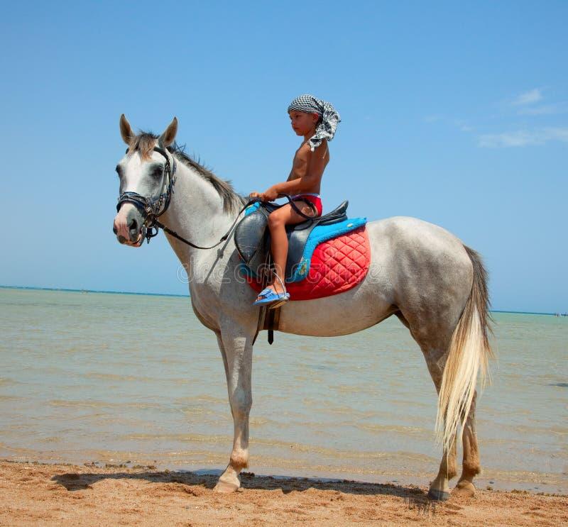 Un ragazzo su a cavallo fotografie stock