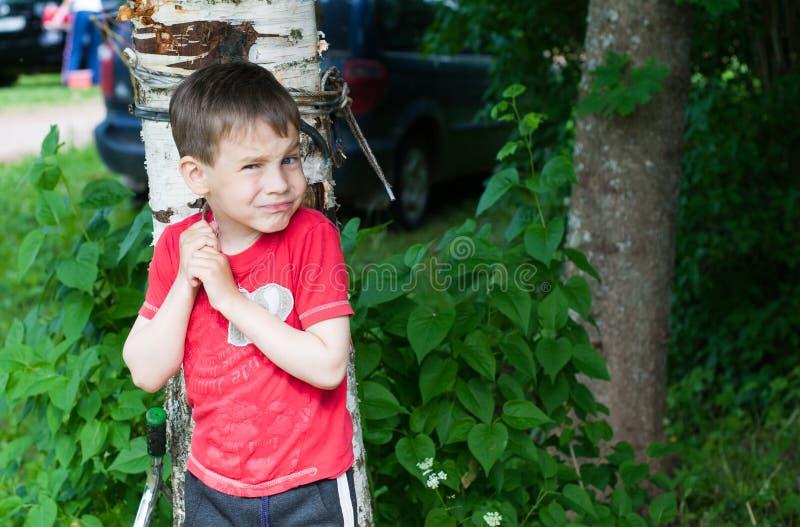 Un ragazzo in una maglietta rossa è andato a fare una passeggiata nell'iarda di estate immagini stock libere da diritti