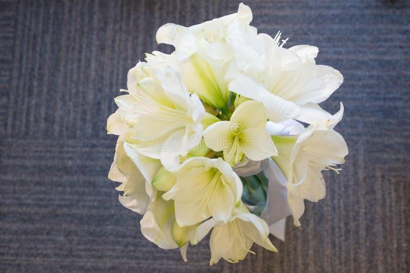 Un ramo de Amarilis blanco Nupcial, celebraci?n y concepto de Birhtday Fondo imágenes de archivo libres de regalías