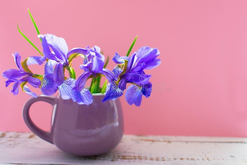 Un ramo de flores azules del iris en una taza de la lila en un fondo rosado apacible fotos de archivo libres de regalías