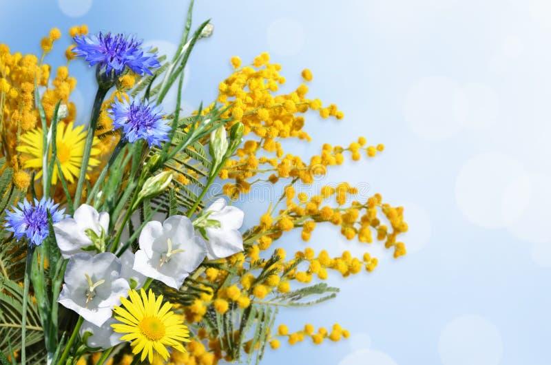 Un ramo de flores en un fondo azul claro fotos de archivo