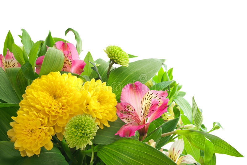 Un ramo de flores frescas aisladas en el fondo blanco fotografía de archivo libre de regalías