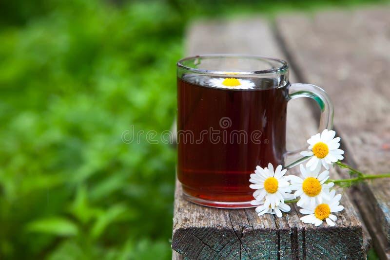 Un ramo de flores de margaritas y de una taza de cristal de té en un viejo fondo de madera en el jardín fotografía de archivo libre de regalías