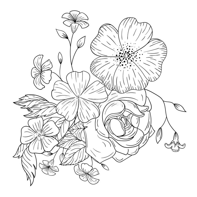 Un Ramo De Flores Para Los Libros De Colorear Ilustración del Vector ...
