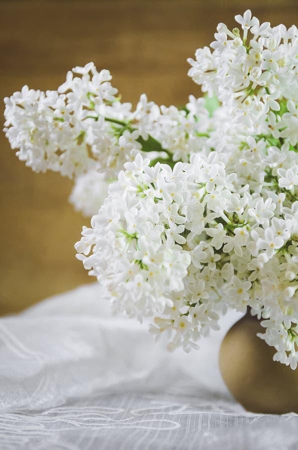 Un ramo de lila blanca en un pote de arcilla en un fondo de madera primer, foco suave imágenes de archivo libres de regalías