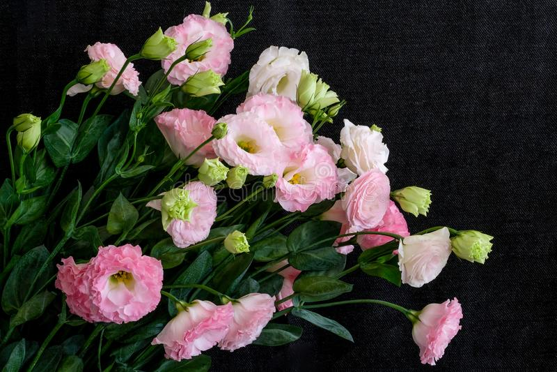 un ramo de Lisianthus rosado fotografía de archivo libre de regalías