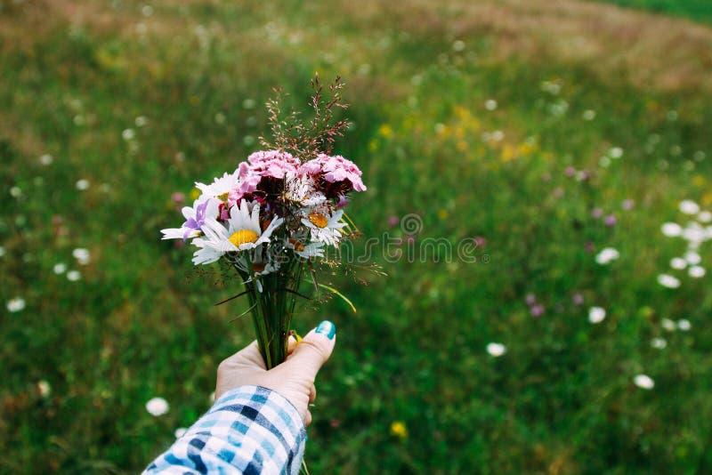 Un ramo de los wildflowers brillantes - campanas, manzanilla y otras púrpuras en la mano de una mujer Naturaleza salvaje Primer fotografía de archivo libre de regalías