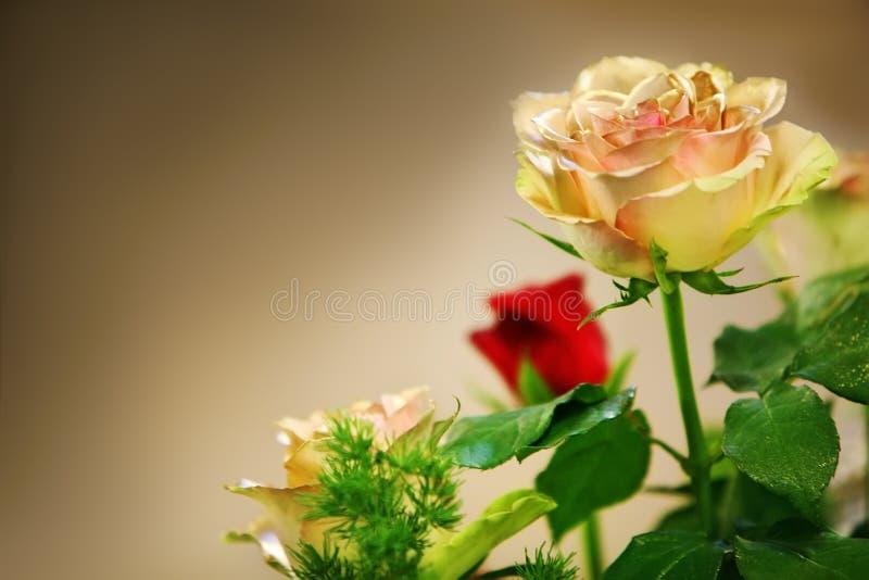 Un ramo de rosas rojas y amarillas imagenes de archivo