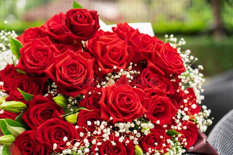 Un ramo de rosas rojas fotos de archivo libres de regalías