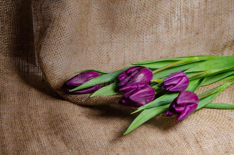 Un ramo de tulipanes en un fondo de la arpillera fotos de archivo