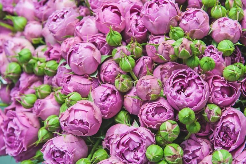 Un ramo enorme de pequeñas rosas rosadas de variedades modernas en el ramo como regalo Foco selectivo fotografía de archivo libre de regalías