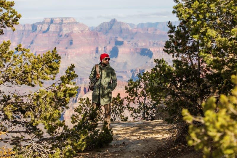 Un randonneur en parc national de Grand Canyon, jante du sud, Arizona, Etats-Unis images stock