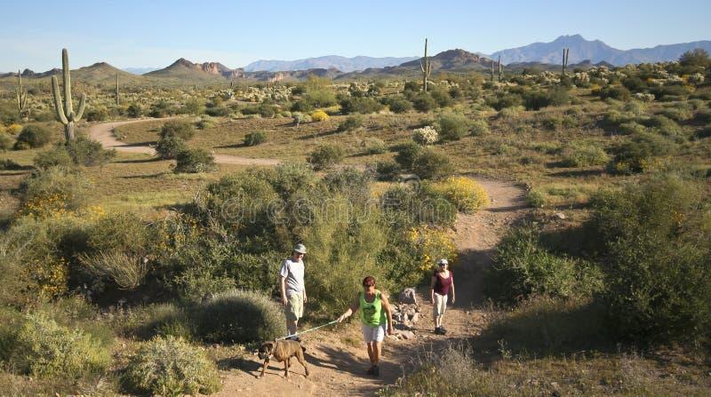 Un rastro en el desierto de montaña de la superstición foto de archivo