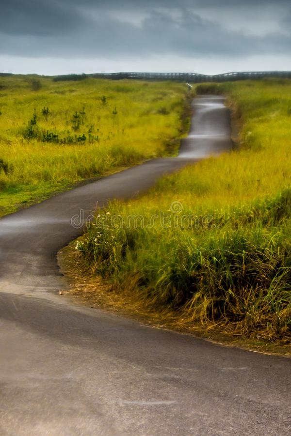 Un rastro que camina de la bobina por algunas hierbas verdes altas que llevan a la playa del océano en Autumn Evening In Long Bea imagen de archivo