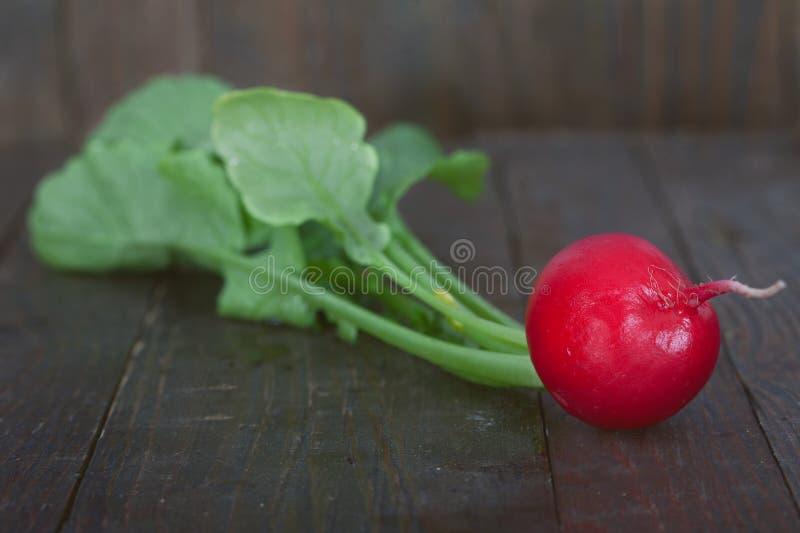 Un ravanello rosso su fondo di legno fotografia stock libera da diritti