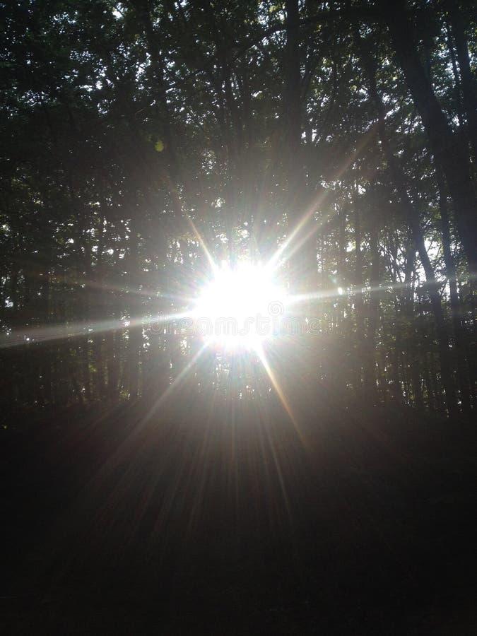 Un rayon de lumière images libres de droits