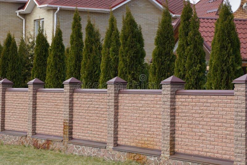 Un recinto marrone lungo del mattone e una fila degli alberi verdi coniferi fotografia stock