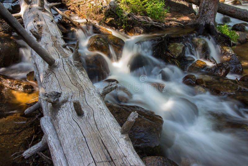 Un registro pone en una corriente reservada en las montañas rocosas fotografía de archivo