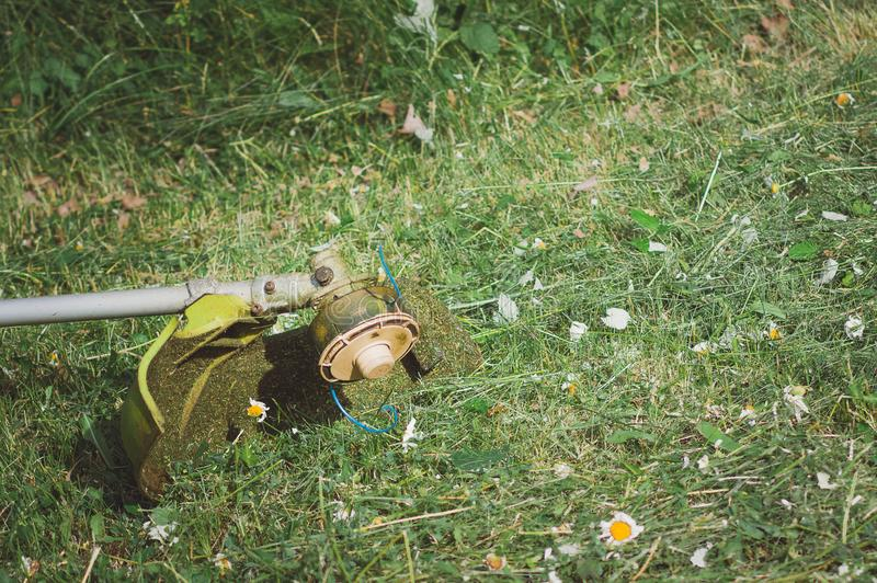Un regolatore della falciatrice da giardino si trova sull'erba nel giardino Smussatura di erba, tagliente i prati inglesi immagini stock libere da diritti
