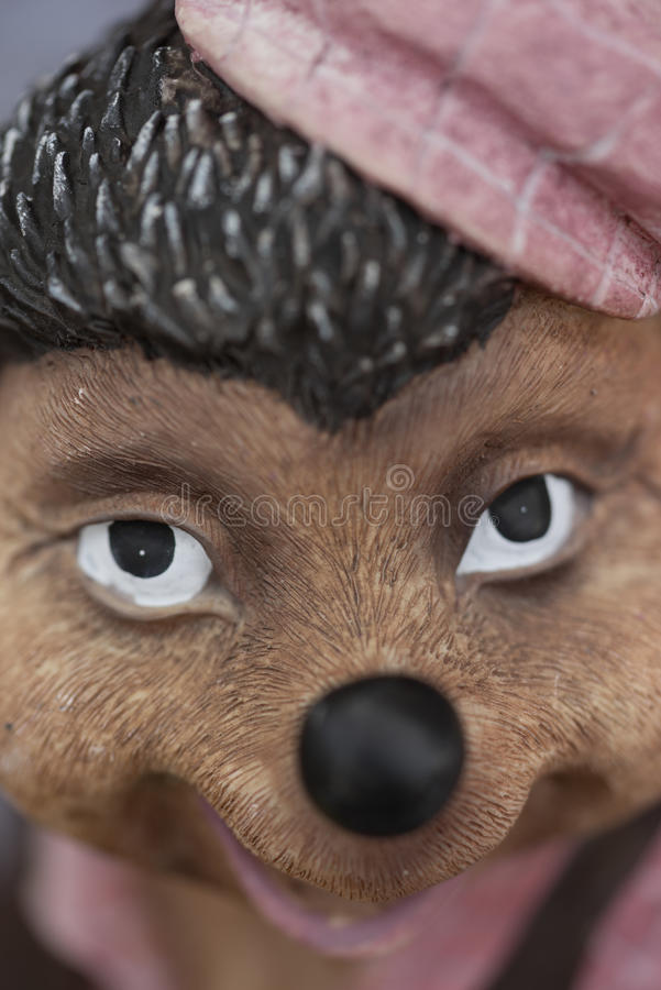 Un renard vilain photos libres de droits