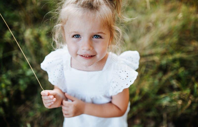 Un retrato de la pequeña muchacha en naturaleza soleada del verano fotografía de archivo libre de regalías